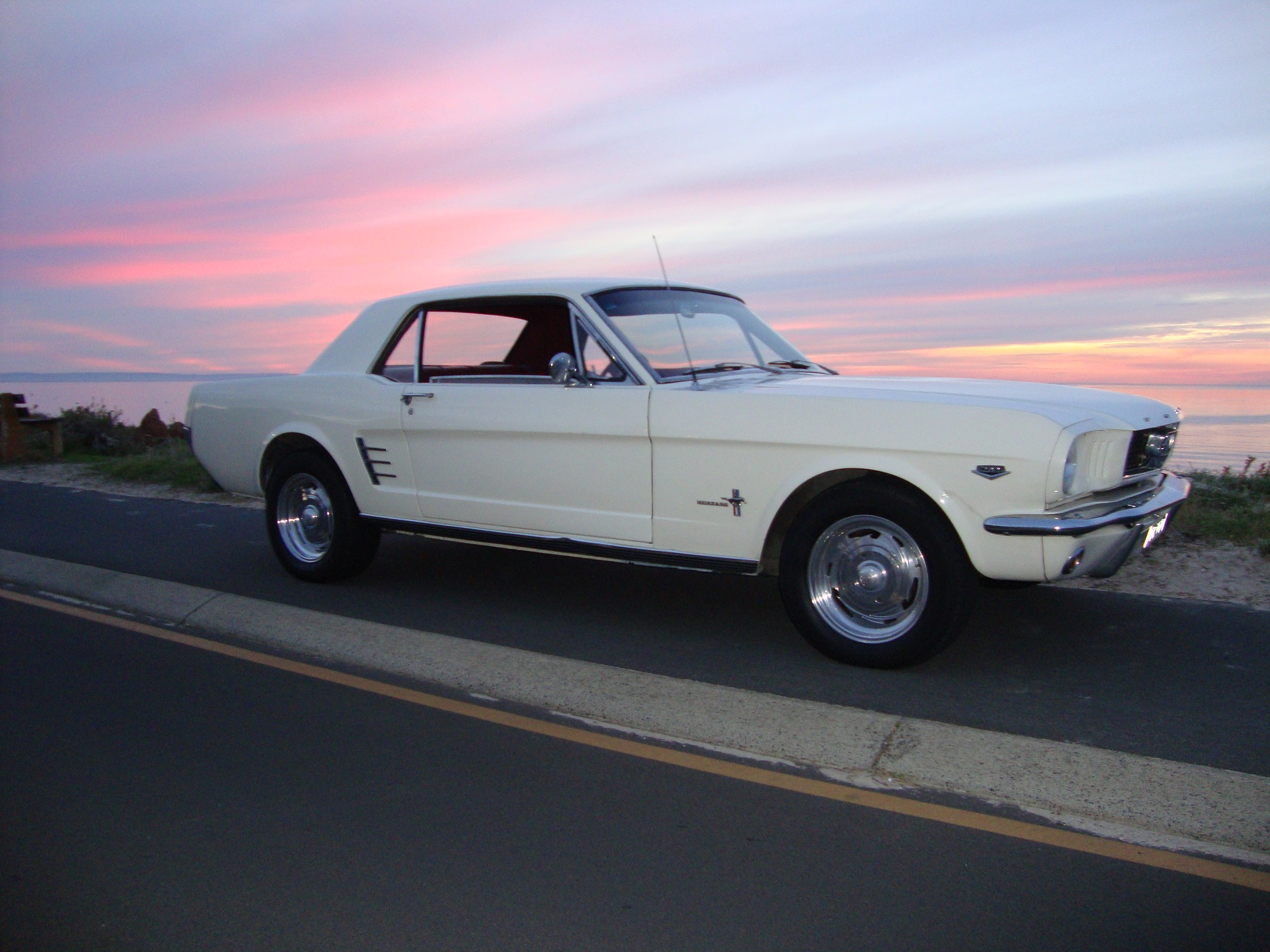 The Motor Shed Mustang